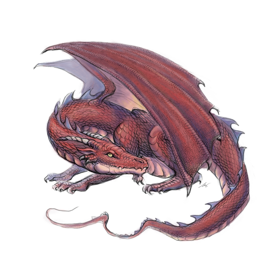 Dragon rojo feroz by Andreiuska