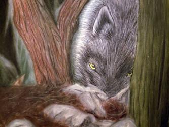 Black Wolf by Nekot-The-Brave