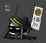 1800s Tokugawa Shogunate