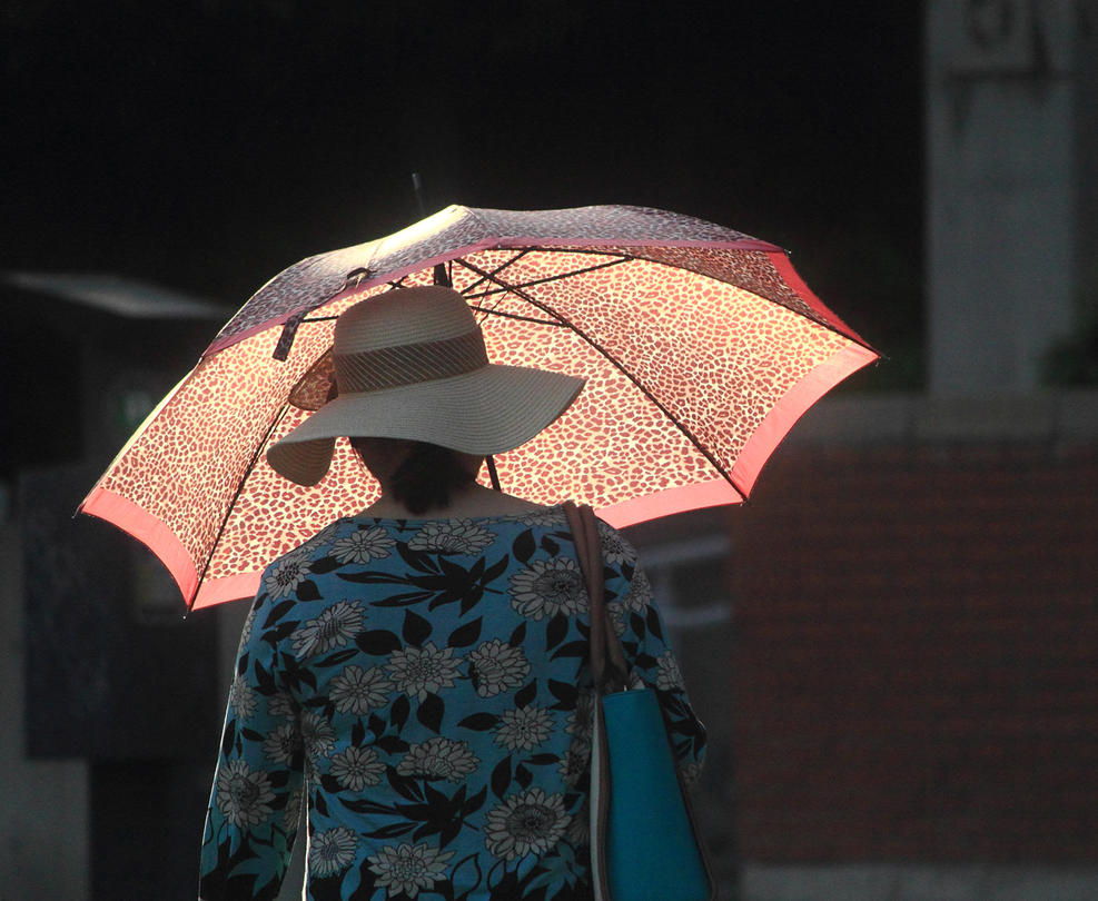 Woman with Umbrella by DouglasHumphries