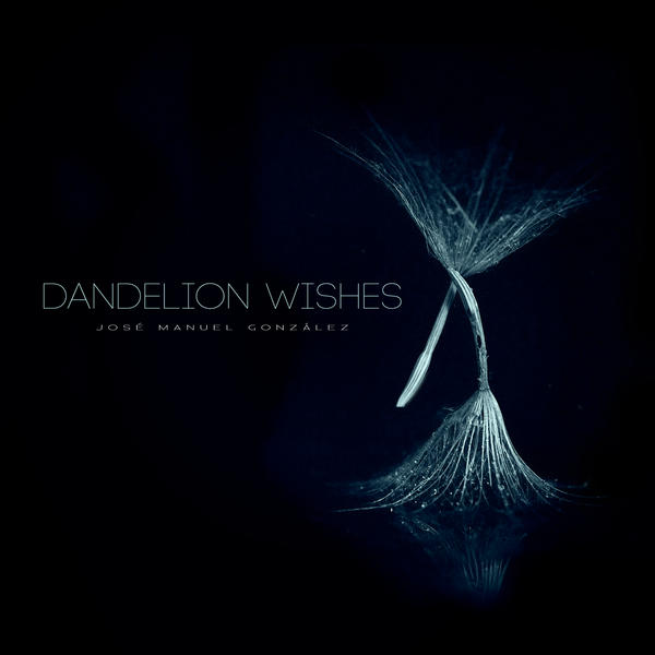 Dandelion Wishes (Single Cover) by hydrocean