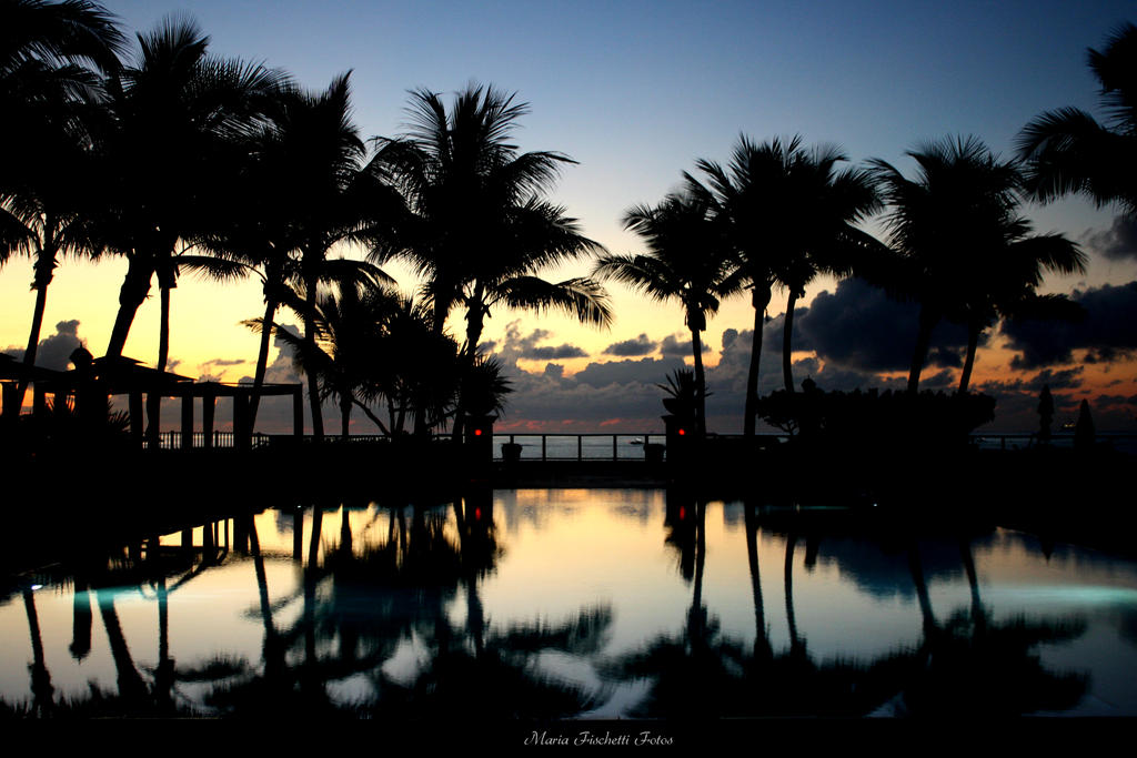 Morning Reflection by BklynGirl