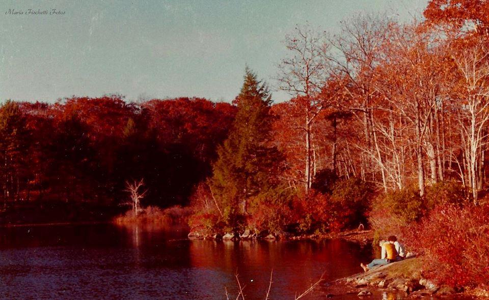 Fall in New York by BklynGirl