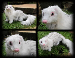 SOLD Full furred ferret commission! by CreaturesofNat