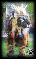 SOLDFlare the sunburst lion poseable artdoll OOAK! by CreaturesofNat