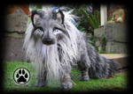 PERSONAL WORK! Eclip the Shadow guardian wolf OOAK