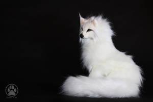 NFS White Wolf Immie Poseable artdoll OOAK! by CreaturesofNat