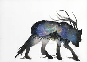 Alaskan Galaxy Wolf Watercolour painting.
