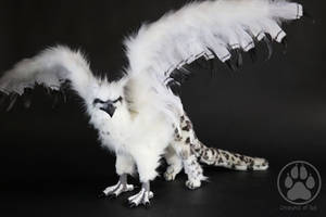 SOLD Snow Leopard Griffin Commission by CreaturesofNat