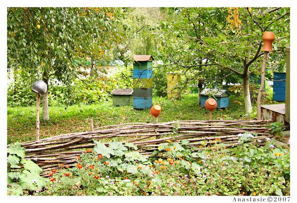 Fence od Vydubetsky monastery by AnastasieLys