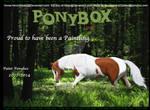 Paint Ponybox