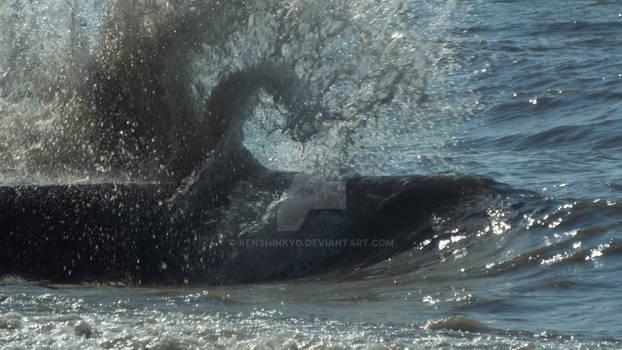 wave breaking 2