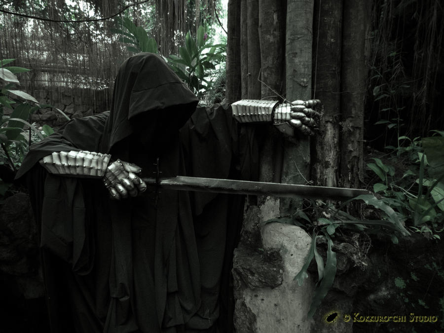 My Nazgul / Ringwraith - Hunting Hobbits by akagii2004