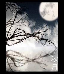 Autumn Moon by seicke