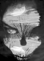 TRANSFIGURATION OF A DREAM by seicke