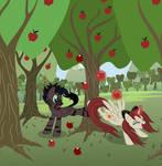 Akira and Stormy apple-buckin'