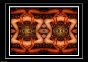 'The lotus' by Lidbury