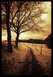 The golden path IR by caithness155