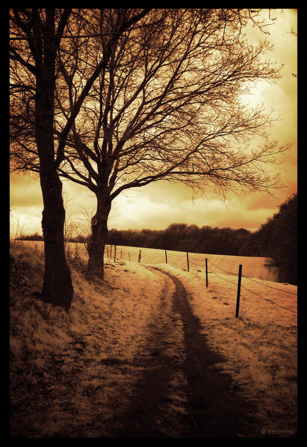 The golden path IR by caithness155