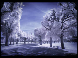 Let's walk IR by caithness155