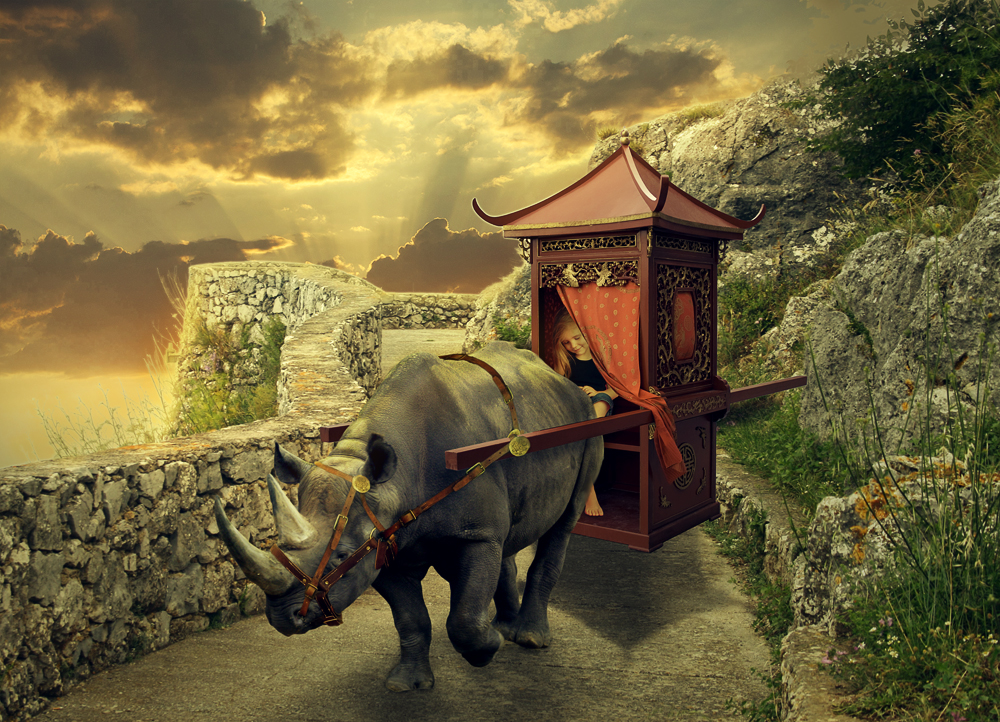 Rhino-ricksha by sarirus