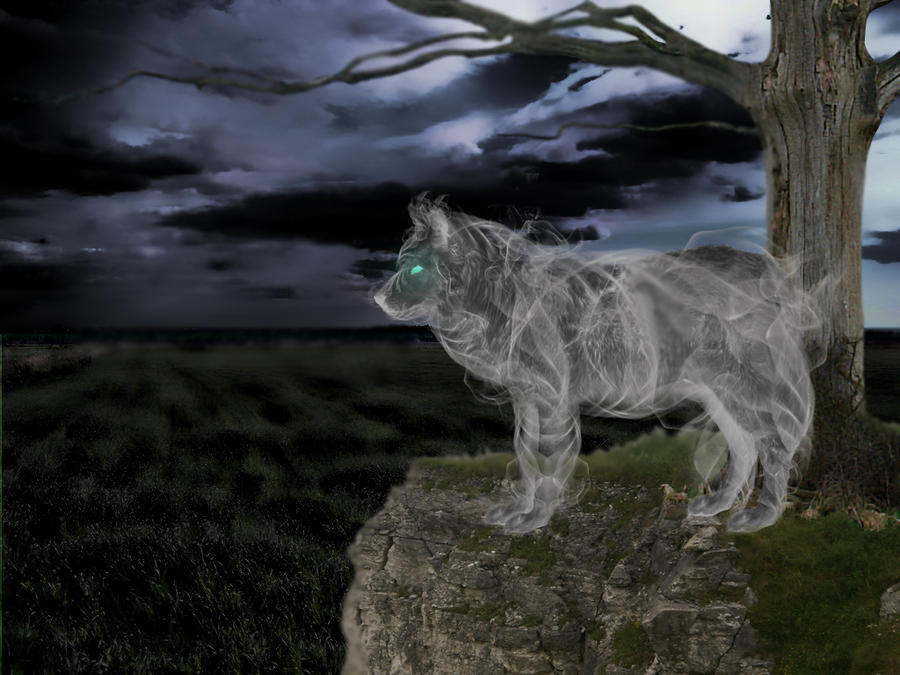 Ghost Wolf by marinaawin