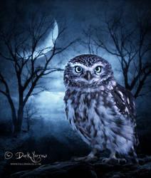 Moon Owl by Dark-Yarrow