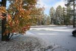 Septembers First Snow  in LOL by FireBoar