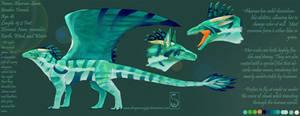 Akaruai Ref Sheet by Dragonsong93