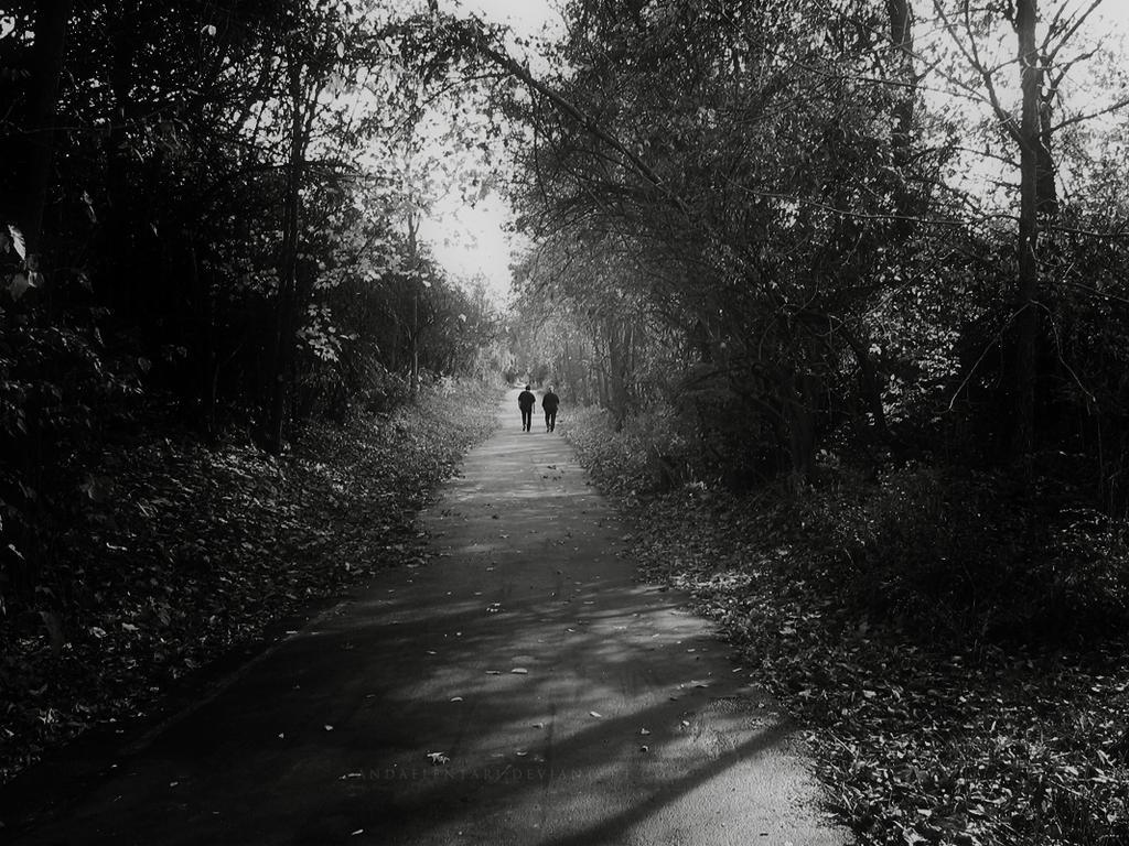 lost together by Andaelentari