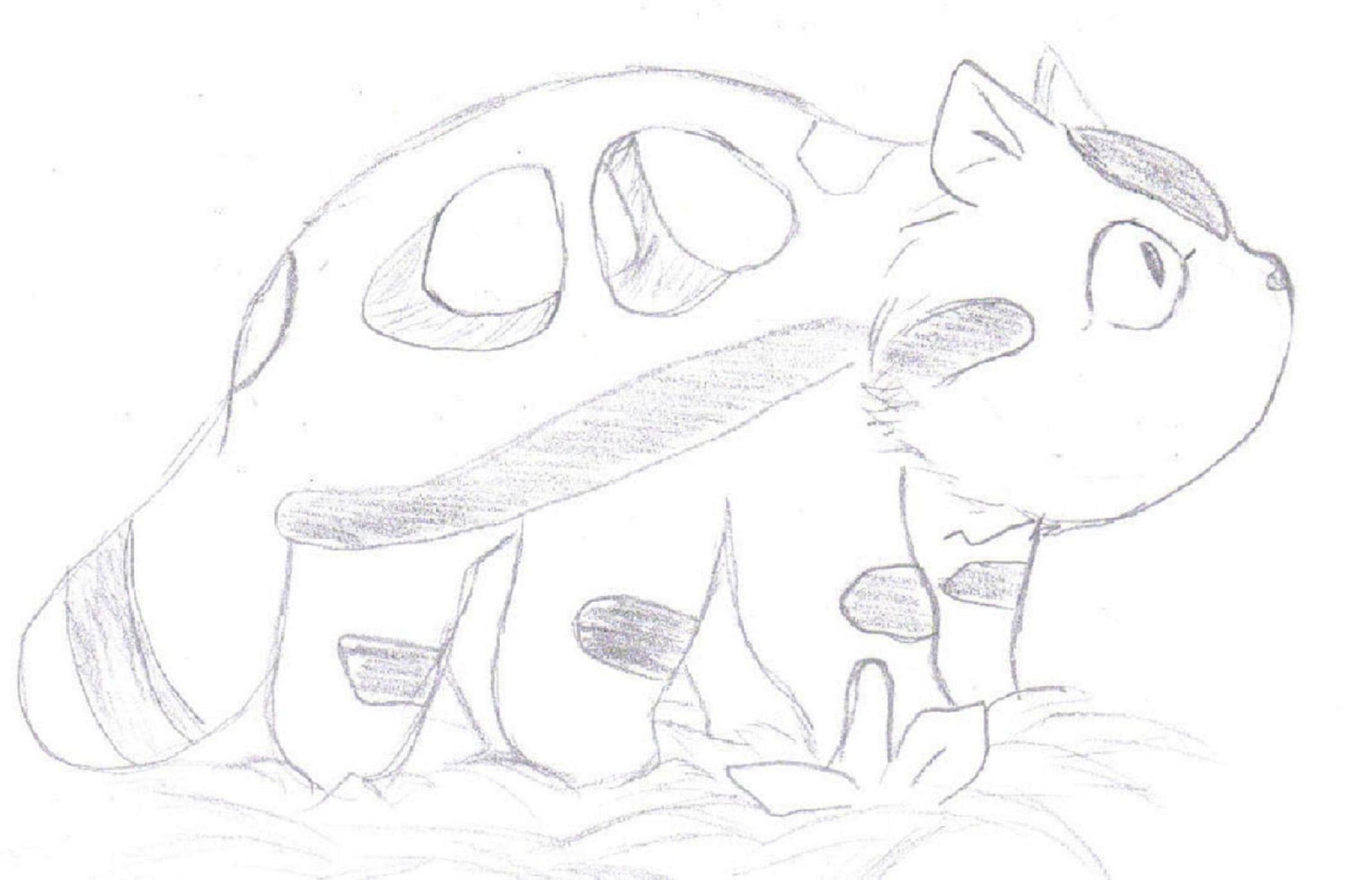 White Totoro Drawing Totoro Cat Bus...432 x 350