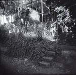 stairway #1 by golehm