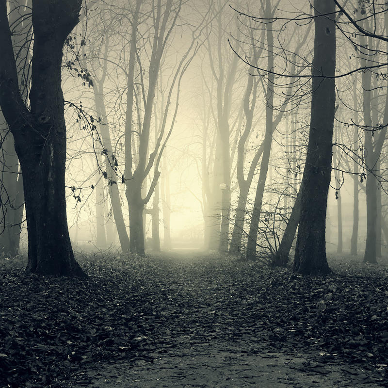 Ghostly Path Premade 2