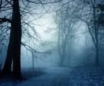 Frozen Forest Premade