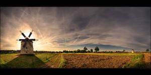 The windmills of Te's