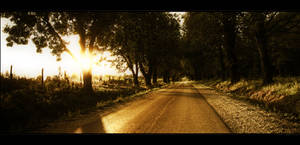 The road with no name