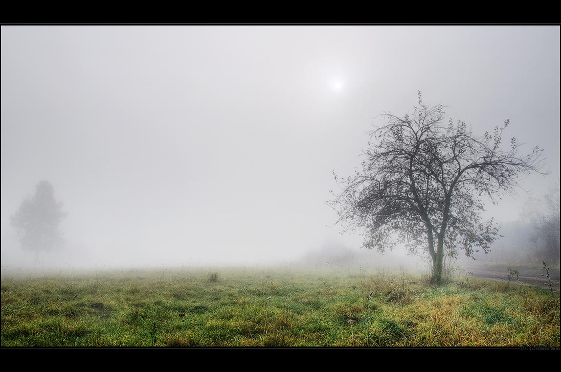 November mist by realityDream