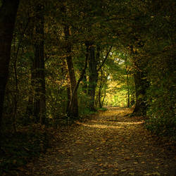 Autumn walk by realityDream