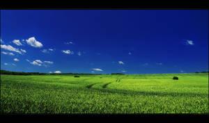 Summer wheatlands pt.V. by realityDream