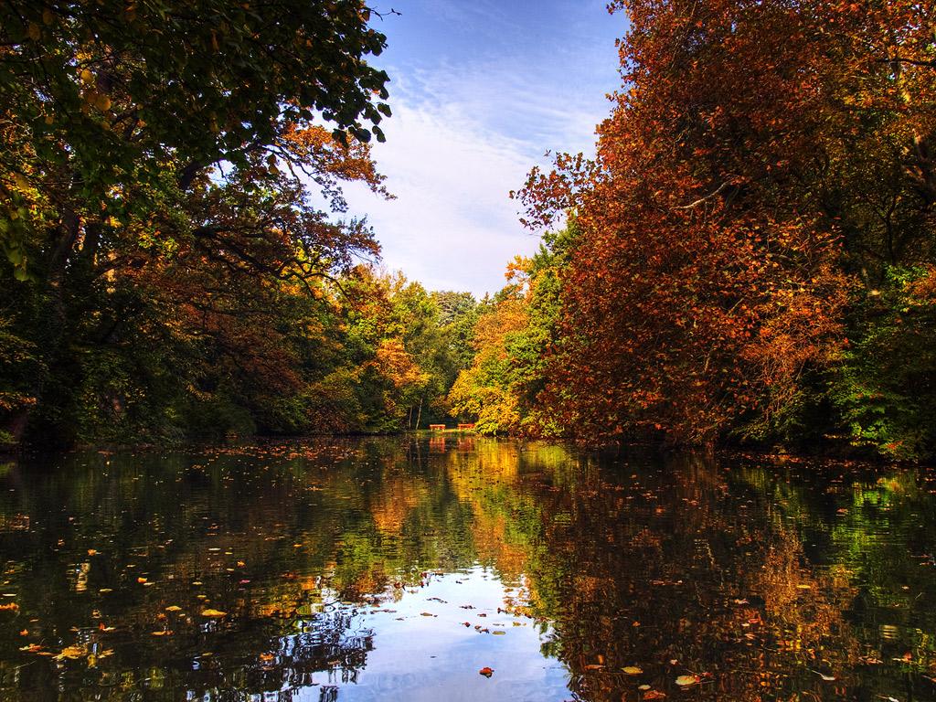 Autumn mirror by realityDream
