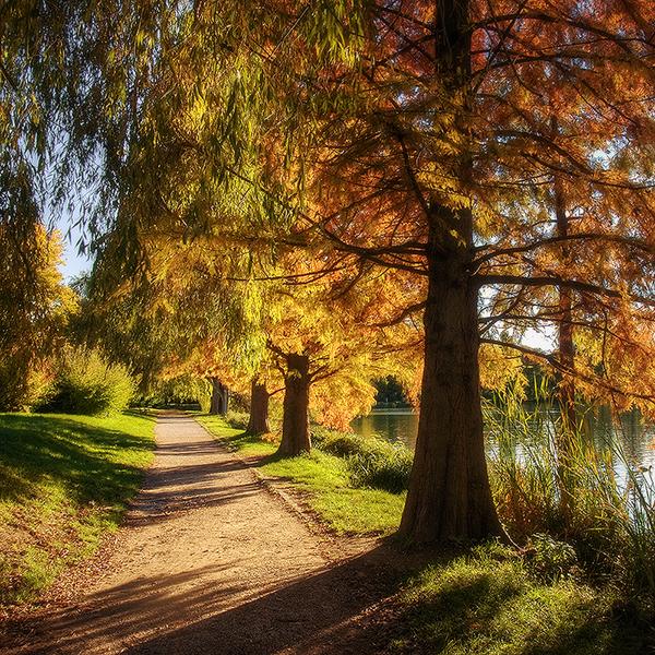Autumn walk III. by realityDream