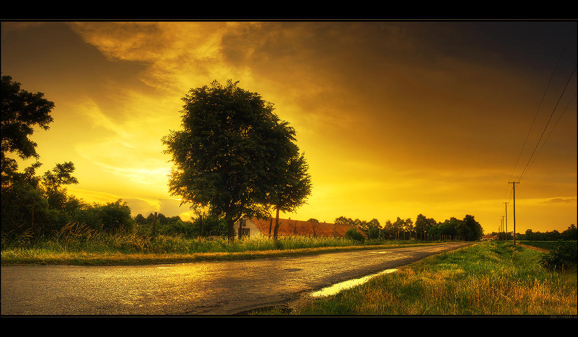 The golden era III. by realityDream