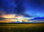 Summer wheatlands pt.X.