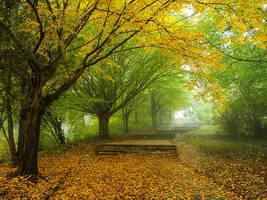 Autumn walk V. by realityDream