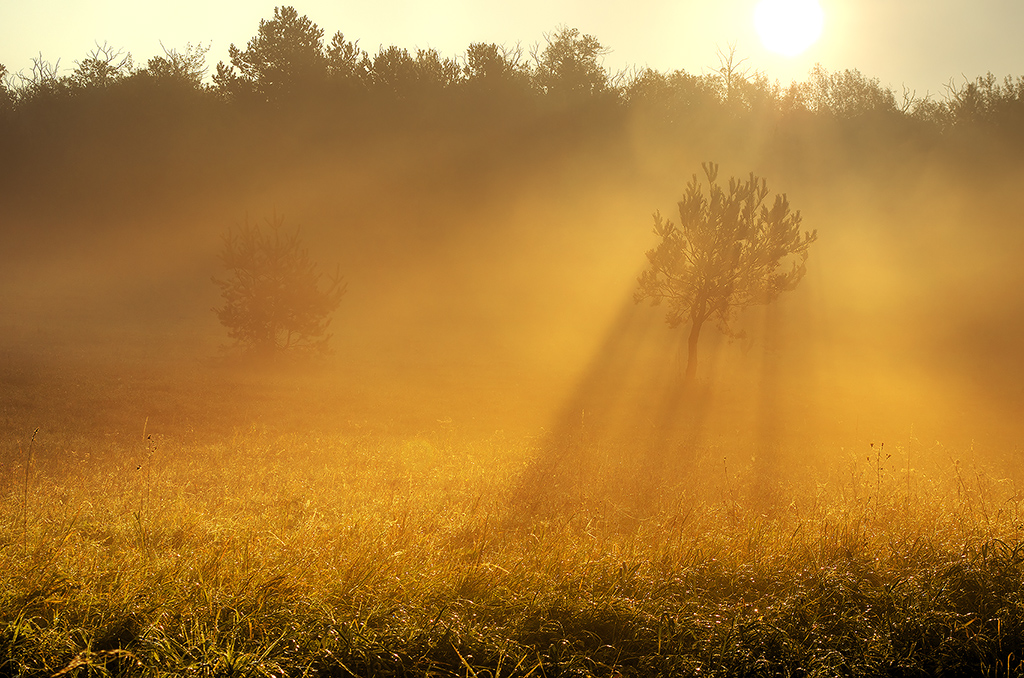 Sunrise overture pt.III. by realityDream