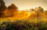 Sunrise overture pt.VI.
