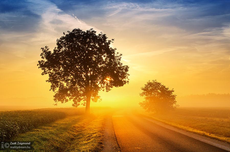 Sunrise overture pt.IX. by realityDream