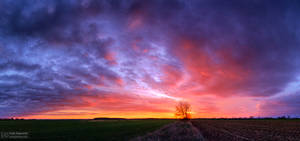 Hungarian skies pt.CLVIII.