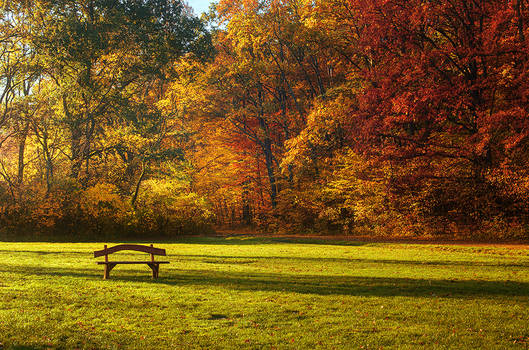 Autumn Walk pt.XII.