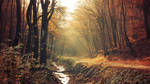 Red Forest pt.I.
